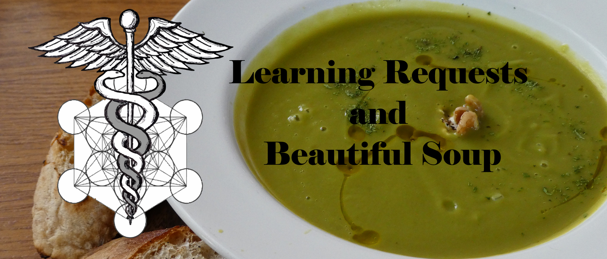 Python Requests and Beautiful Soup - Playing with HTTP Requests, HTML Parsing and APIs